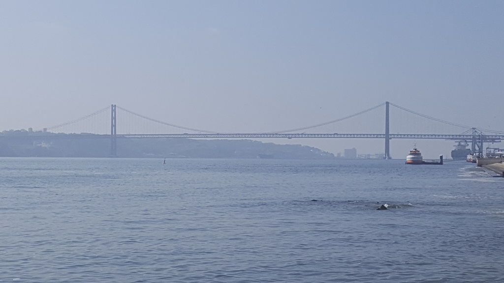 The Tagus from the Praço