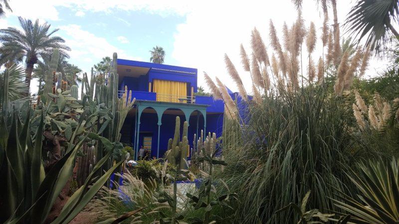Marrakesh-Morocco-Ville_Nouvelle-Jardin-Marjorelle-Blue-Cactus-Garden