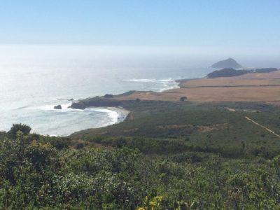 The Big Sur Coastline Draws You in