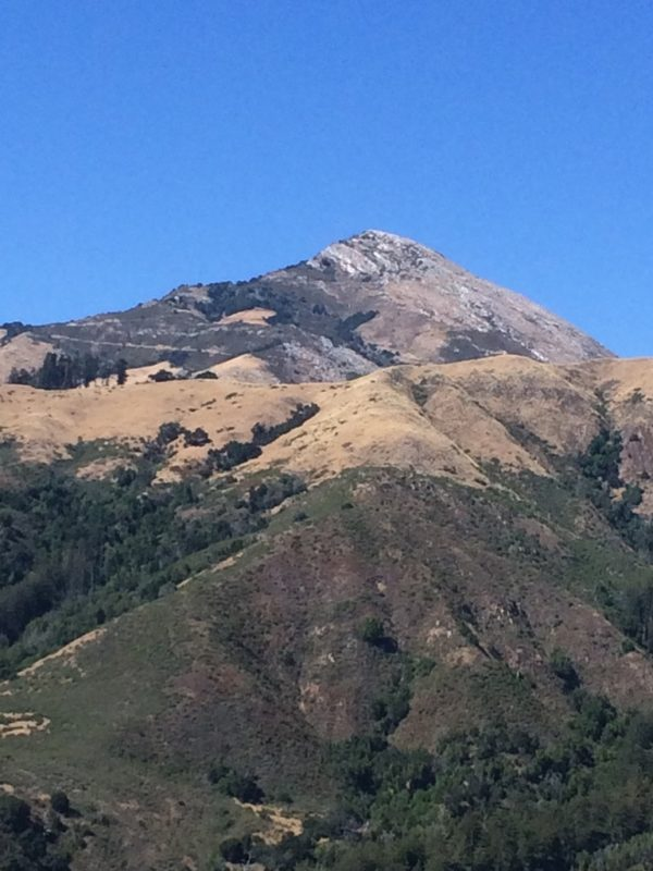 We Could Have Climbed the Peak. . .