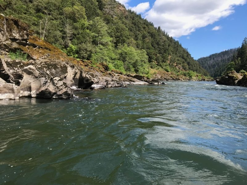 wild and scenic rogue river