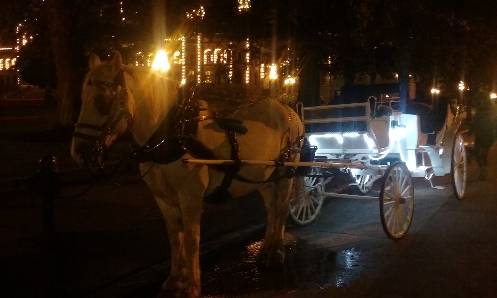 The Carriage Rides Remind Me of New York City