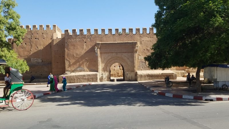 Souss-Valley-Taroudant-Gates